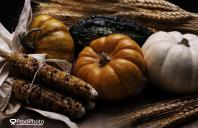 The Chanler Group Wishes Everyone a Happy and Healthy Thanksgiving